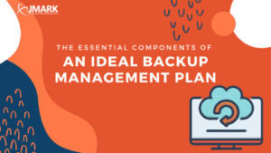 The Essential Components of an Ideal Backup Management Plan